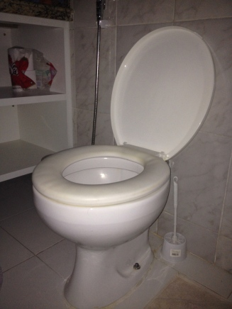 yup that's my toilet